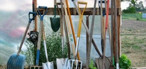 7 Must Have Tools for Garden Maintenance
