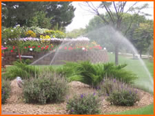 Water Inefficient Irrigation