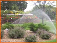 Water Inefficient Irrigation